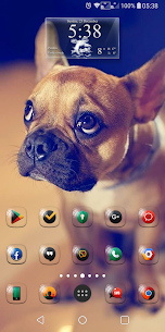 Glasso Icon Pack v1.1 [Paid] APK [Latest] 4