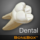 BoneBox™ - Dental Lite apk