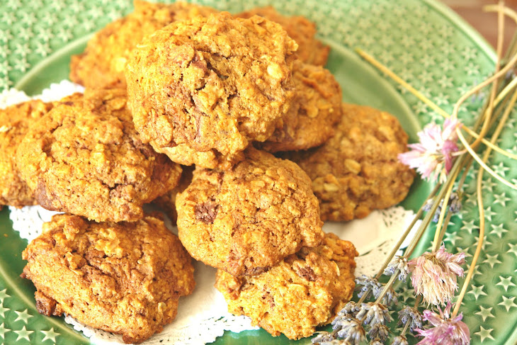 Oatmeal with Chocolate and Apple Biscuits