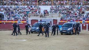 13.000 personas han asistido a las exhibiciones realizadas en la Plaza de Toros.