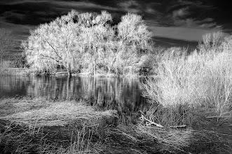Photo: Riverside Mood 01  Water Meadows
