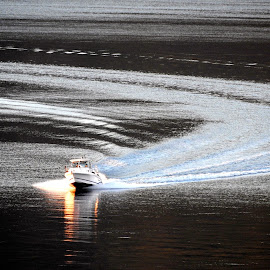 Home by Sunset by Campbell McCubbin - Transportation Boats ( water, pattern, sunset, wake, boat,  )