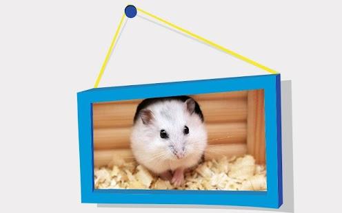 Zvířata Puzzle: Křečci - náhled