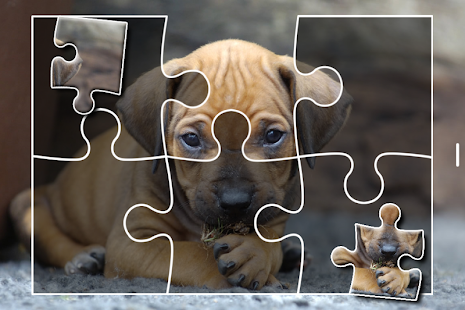 Puppies Jigsaw Puzzles Free Pet Games for Kids- screenshot thumbnail