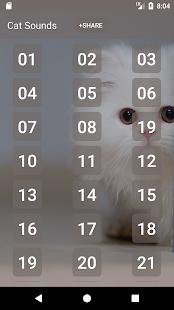 Cat Sounds and Ringtone - náhled