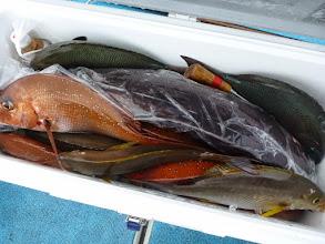"""Photo: 釣果です! まずは""""クマガイさん""""の釣果。 真鯛、イサキ、オナガにクロ、メダイも入りました!"""