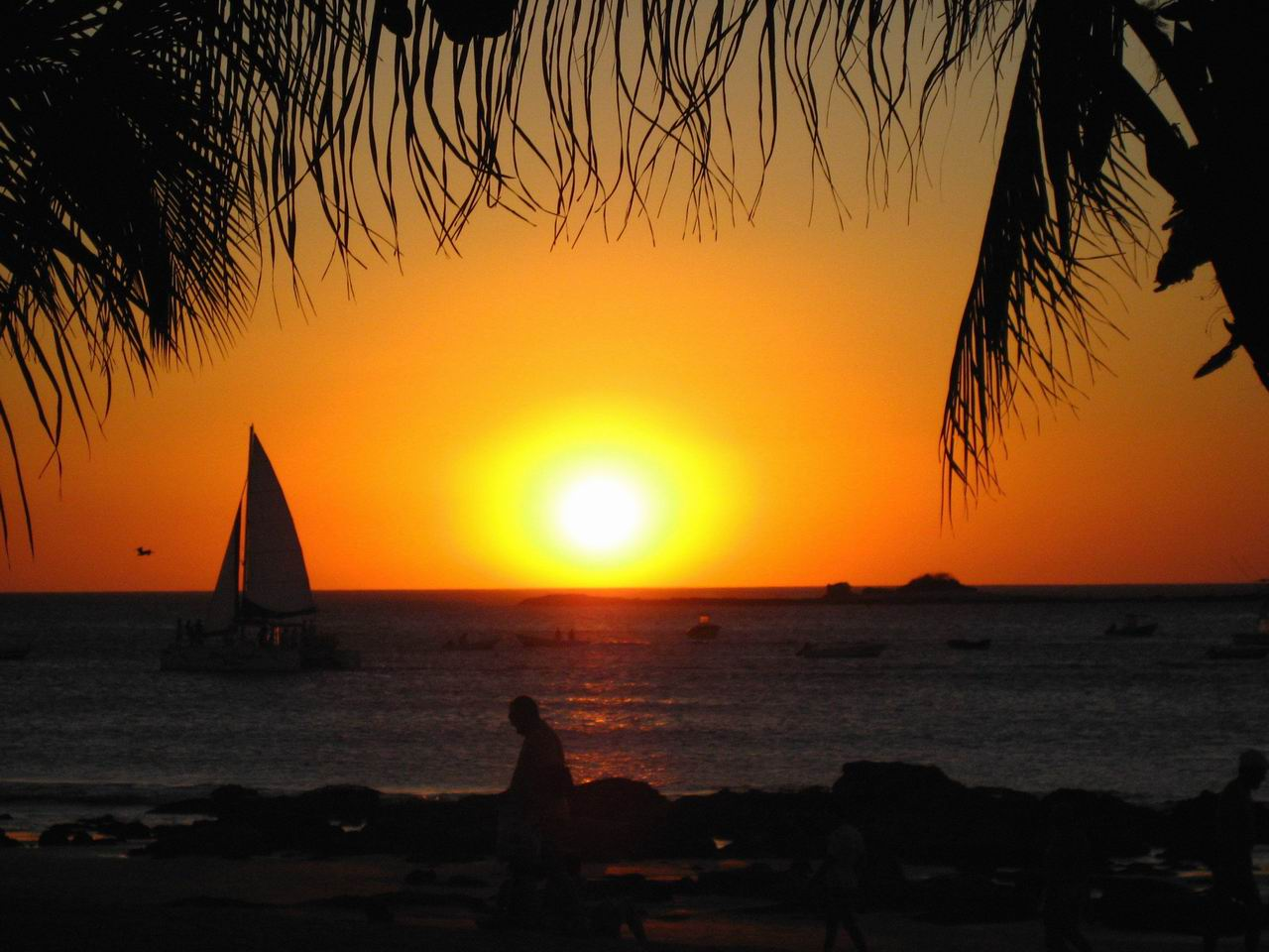 Photo: #170-Coucher de soleil sur Tamarindo