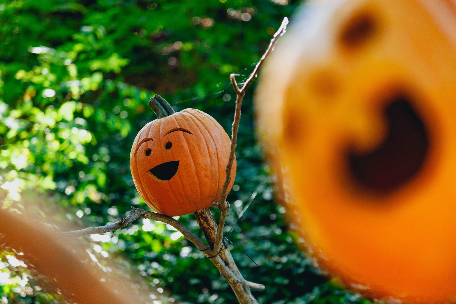 Looking for ideas for a kids Halloween party? Look no further; we've got ten great ones to get you started for a fabulous family Halloween!