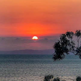 red sunrise  by Taz Graham - Novices Only Landscapes ( ocean, sunrise )