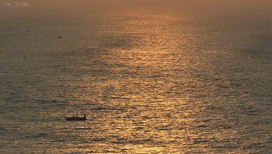 Photo: Vidhyadharan