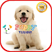 Puppy Training icon