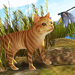 wild cat survive for PC and MAC
