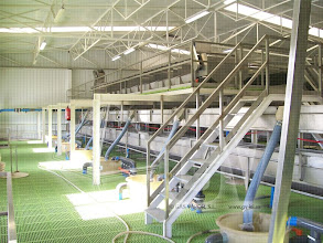 Photo: Gas Vapor S.L. - www.gv.iei.es Instalación de Áreas de Recepción y Cocido-Clasificadora