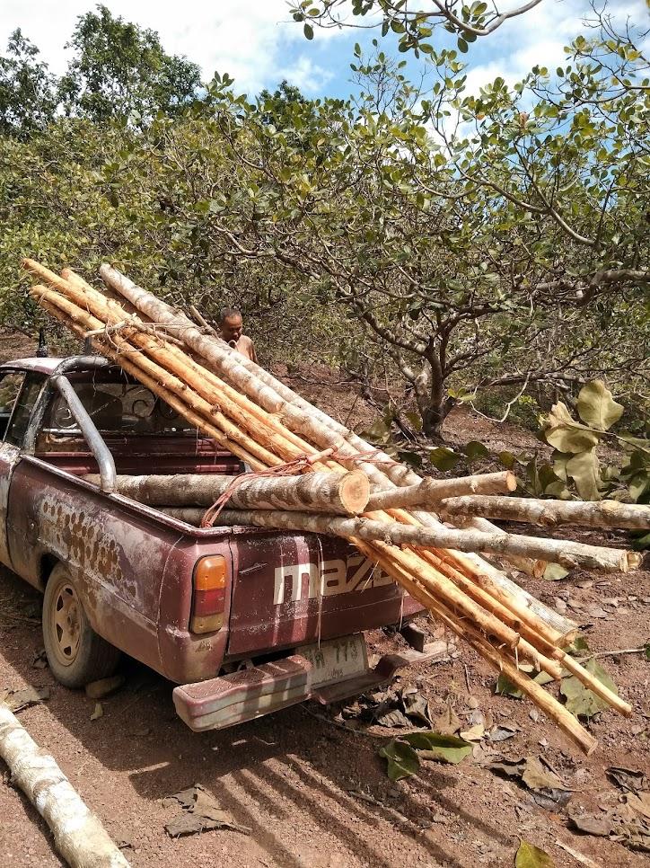 車に木を積み込む