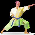 Martial arts APK
