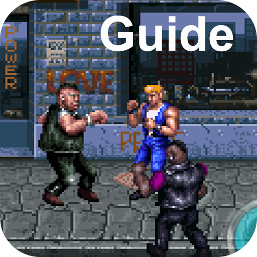 Guide for Double Dragon 3