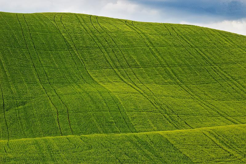 Green!!! di Jordan