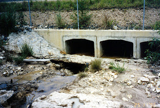 Photo: AUS-HYDR05 - Australia this large culvert is being undercut. It should be reshaped and protected with vetiver