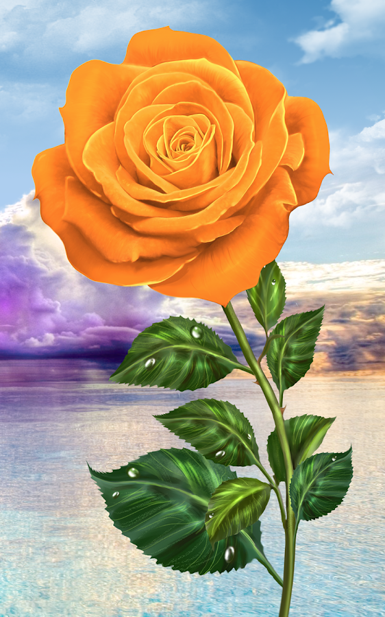Rose. Magic Touch Flowers- screenshot