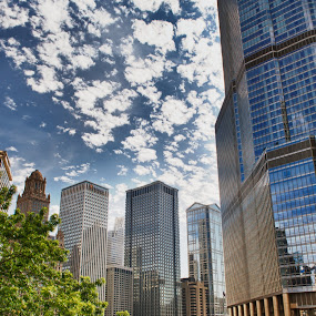 Chicago Towers by T.J. Wolsos - Buildings & Architecture Other Exteriors ( building, hdr, chicago, architecture, nikon )