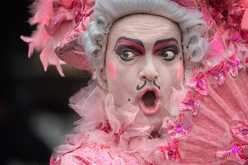 il fenicottero rosa di Rino Lio