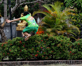 Photo: Day 284 - Boy Jumping Hedge #2