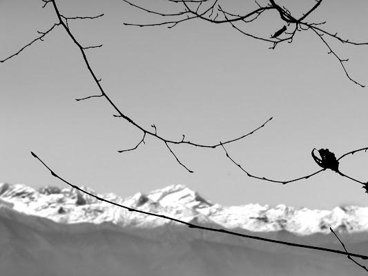 Nelle vene della montagna di gianfranco_liccardo