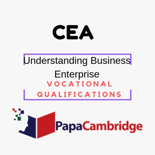 Understanding Business Enterprise Vocational Qualifications Syllabus