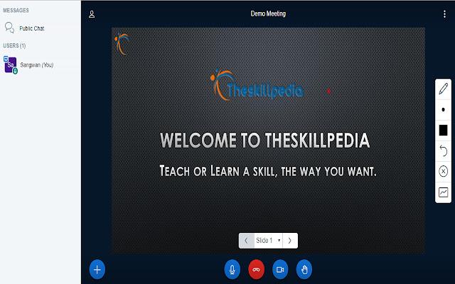 The SkillPedia Screenshare Chrome Extension
