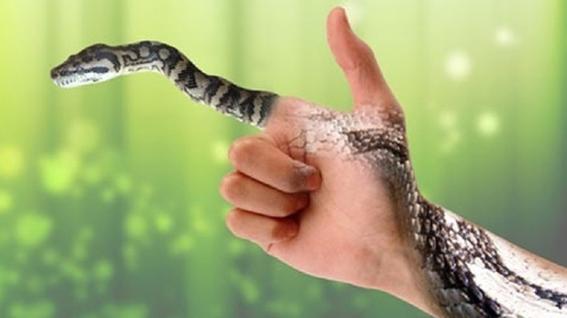 Giấc mơ đánh chết rắn thường là một điềm không tốt