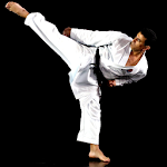 PocketPT - Shotokan Karate 2.1