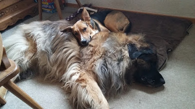Photo: Innige und vertraute Freundschaft
