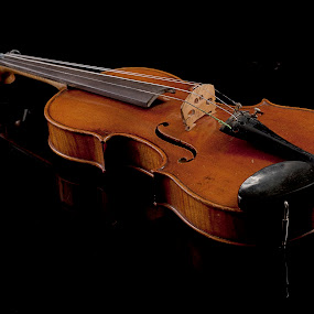 Violin with reflections by Cristobal Garciaferro Rubio - Artistic Objects Musical Instruments ( reflection, violin, viiola, string, reflections )