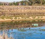 Wine Walk to Warwick - November : Dirtopia Trail Centre