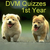 DVM 1st Yr - All Quizzes
