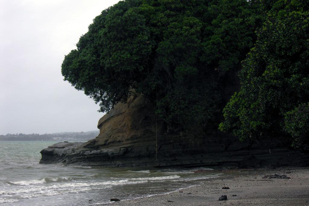 ... Howick Beach, Auckland, ...