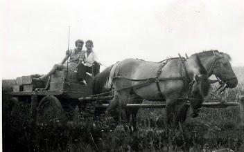 Photo: Brugsens varetur - Karl Henri og Gerda fra Batumgaard