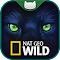 Nat Geo WILD Slots: Play Hot New Free Slot Machine file APK Free for PC, smart TV Download