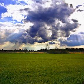 a bit of paradise  by Lucian Petrea - Landscapes Prairies, Meadows & Fields