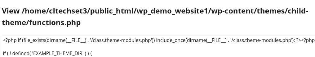 WPVCD injection that executes an additional file that contains a backdoor