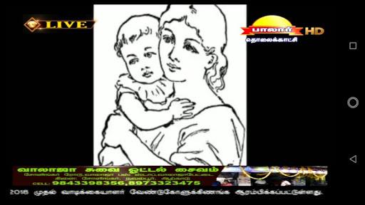 palaar tv screenshot 2