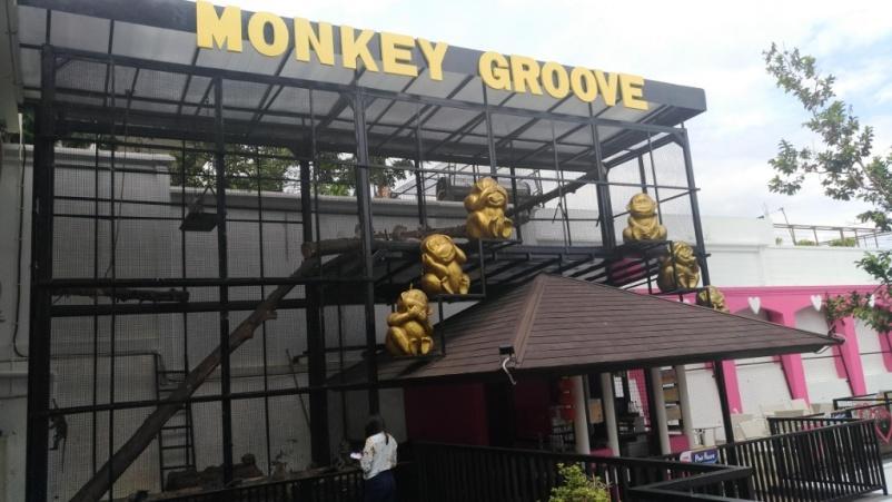 monkey groove.jpg