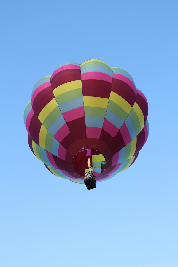 Hot Air Balloon by Emma Kuster - Transportation Other
