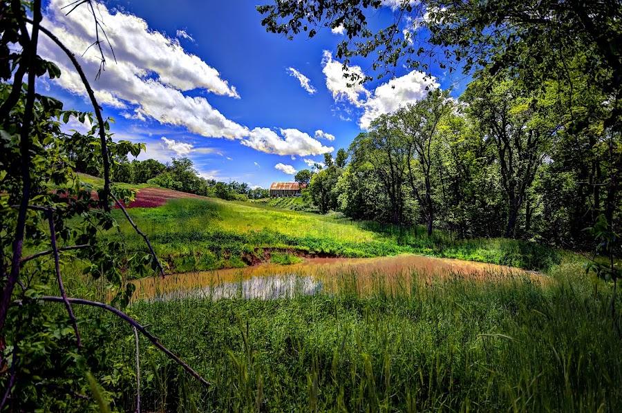 Barn Garden by DE Grabenstein - Landscapes Prairies, Meadows & Fields (  )