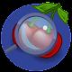 Download Găsește Fructele|Ghicește Fructele Printre Litere For PC Windows and Mac