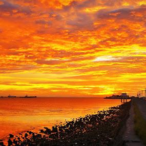 Shades of Orange by Greg Crisostomo - Landscapes Sunsets & Sunrises ( orange, sunset, sea, pier, ships, sun,  )