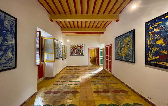 Vente hôtel particulier 15 pièces 900 m2