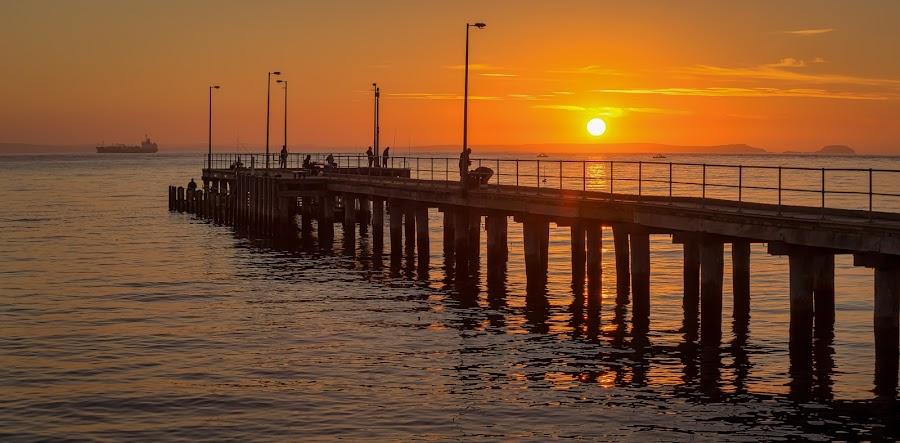 Sunrise Sailing by Keith Walmsley - Buildings & Architecture Bridges & Suspended Structures ( water, nature, australia, boats, pier, victoria, sunrise, landscape, coast )