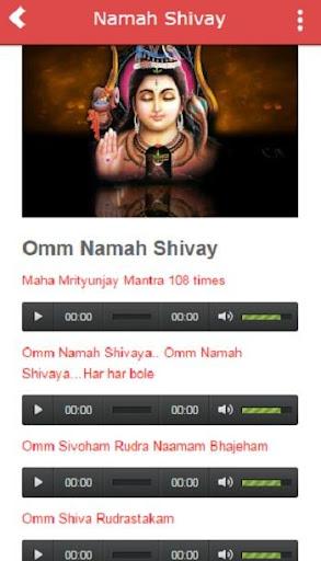 Hindi Bhakti Songs All Gods 1.0 screenshots 3
