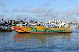 Photo: The world's slowest speedboat.